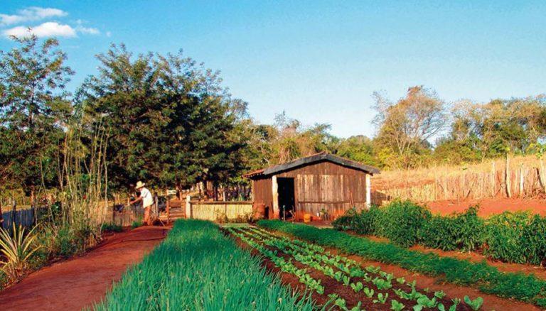 Executado deve provar se propriedade rural é explorada em regime familiar